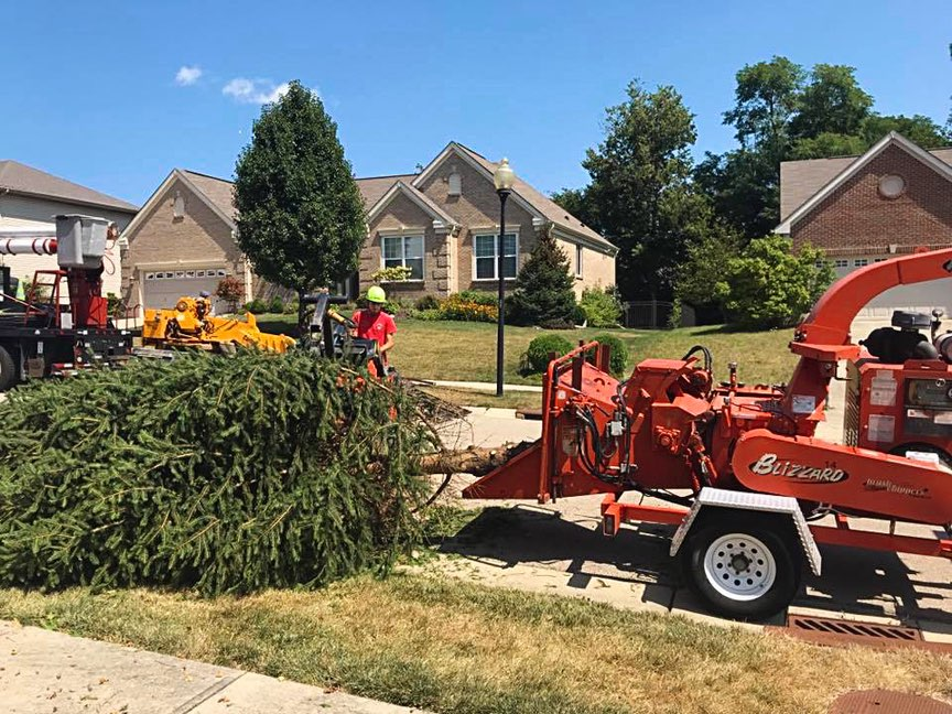 Hudson Emergency Tree Removal